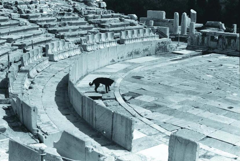 Собака в афинском театре